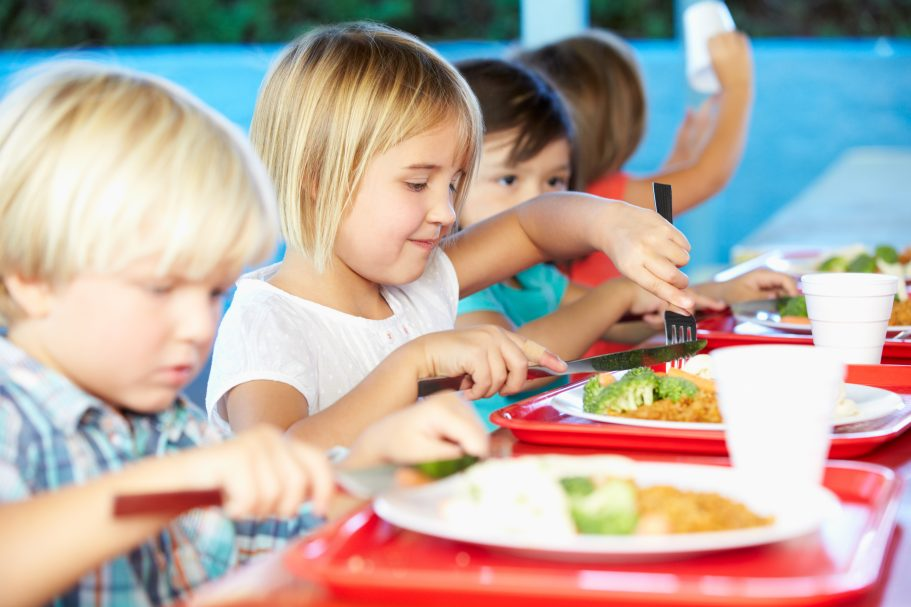 Evaluation of the nutritional impact of different models of PSFP in a school context