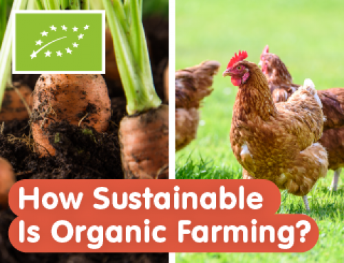 Podcast: How Sustainable Is Organic Farming? (ft. Dr Burkhard Shaer)